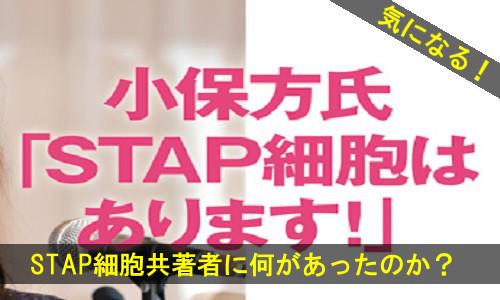 stap-1431