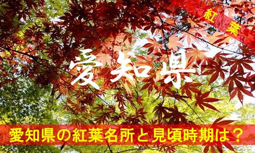 kouyou-ai-2409