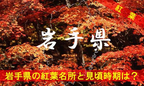 kouyou-iw-2093