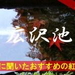 京都通に聞いたおすすめの紅葉名所《広沢池》