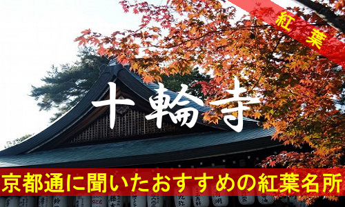 kouyou-kyouto-juurinji-2230