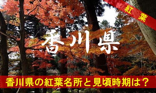 kouyou-ka-2-3030