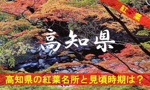 kouyou-ko-3058