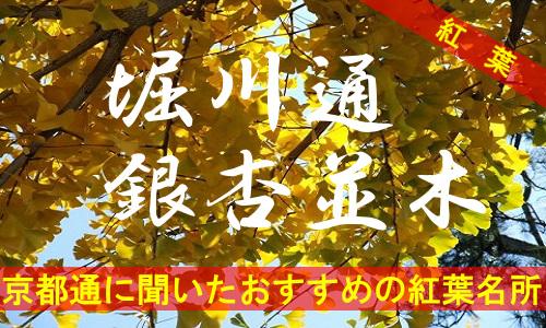 kouyou-kyouto-horikawa-2858