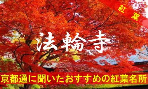 kouyou-kyouto-hourinzi-3202
