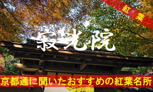 kouyou-kyouto-jakkouin-3909