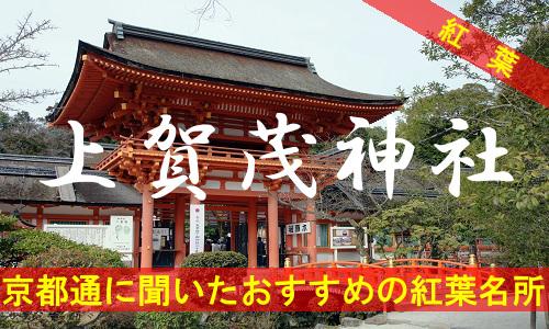kouyou-kyouto-kamigamo-3943
