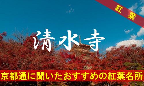 kouyou-kyouto-kiyomizu-3464