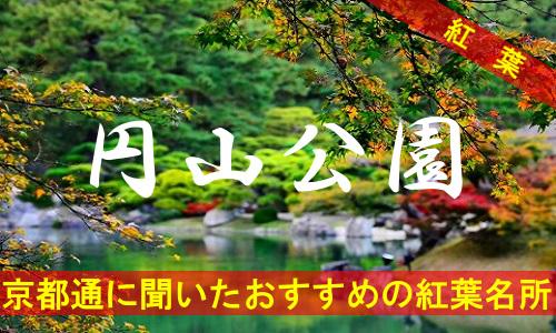 kouyou-kyouto-maruyama-3494