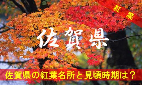 kouyou-sa-2-3138