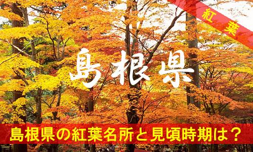 kouyou-si-3-3109