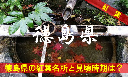kouyou-to-4-3033