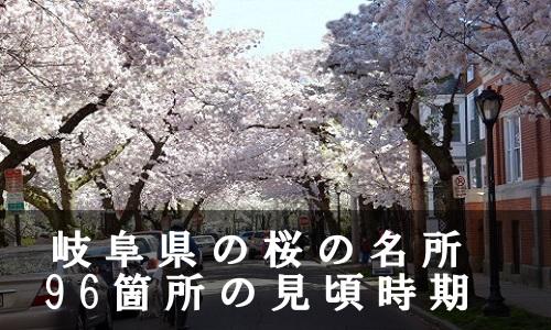 sakura-32-6857