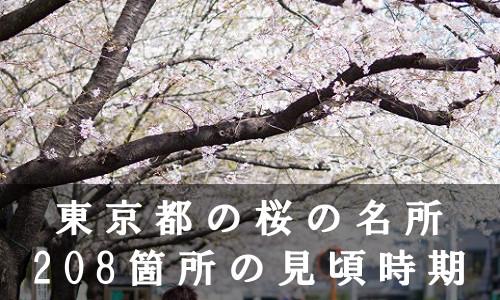 sakura-40-6898