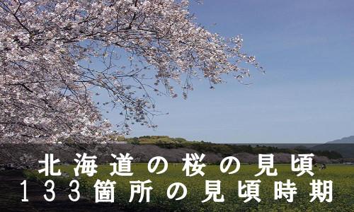 sakura-47-6947