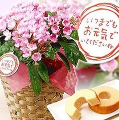 keirou-gift-2