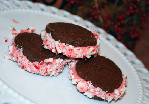 Chocolate Candy Cane Cookies by FamilySpice.com