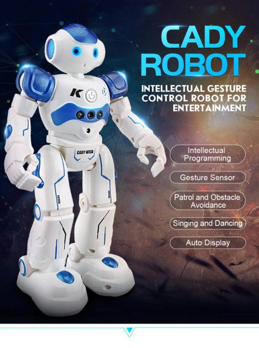 inteligentni robot