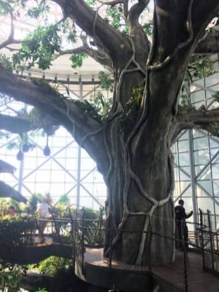 The Green Planet Dubai - enormous artificial tree