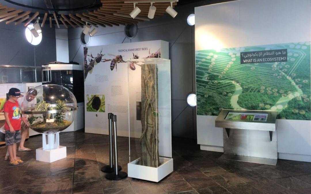 Ecosystem Education at The Green Planet Dubai