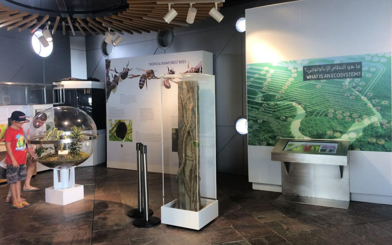 Ecosystem Education at The Green Planet Dubai