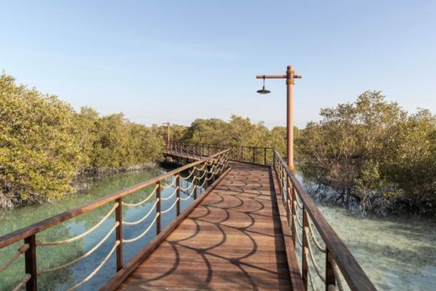 Jubail Mangroves Park wooden Boardwalk