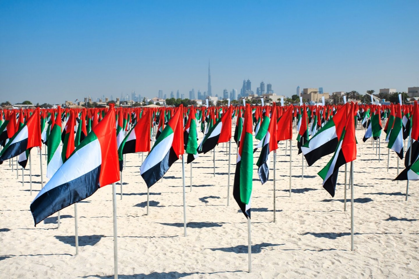 Flags on Kite Beach Celebrating National Day UAE