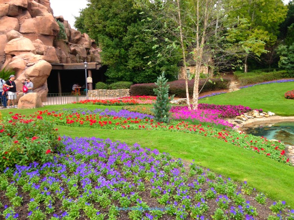 Great But Little Known Photography Spots at Disney World