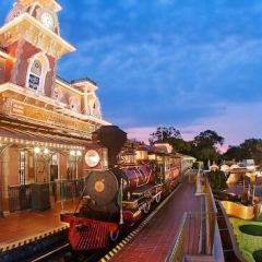 Disney World Transportation Options