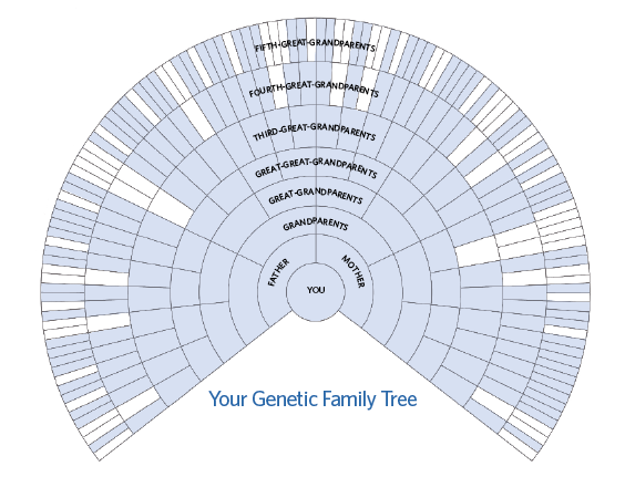 dna solutions genealogical vs