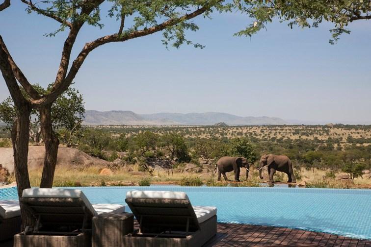 Photo Courtesy of Four Seasons Safari Lodge Serengeti