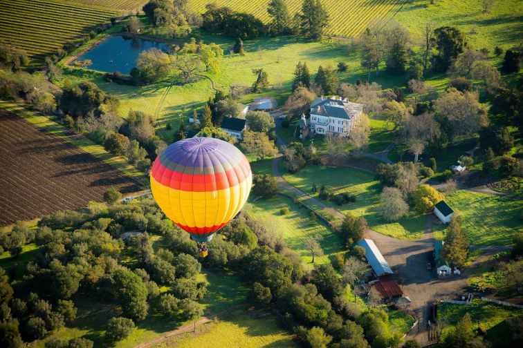 Hot Air Balloon Over Napa Valey, California