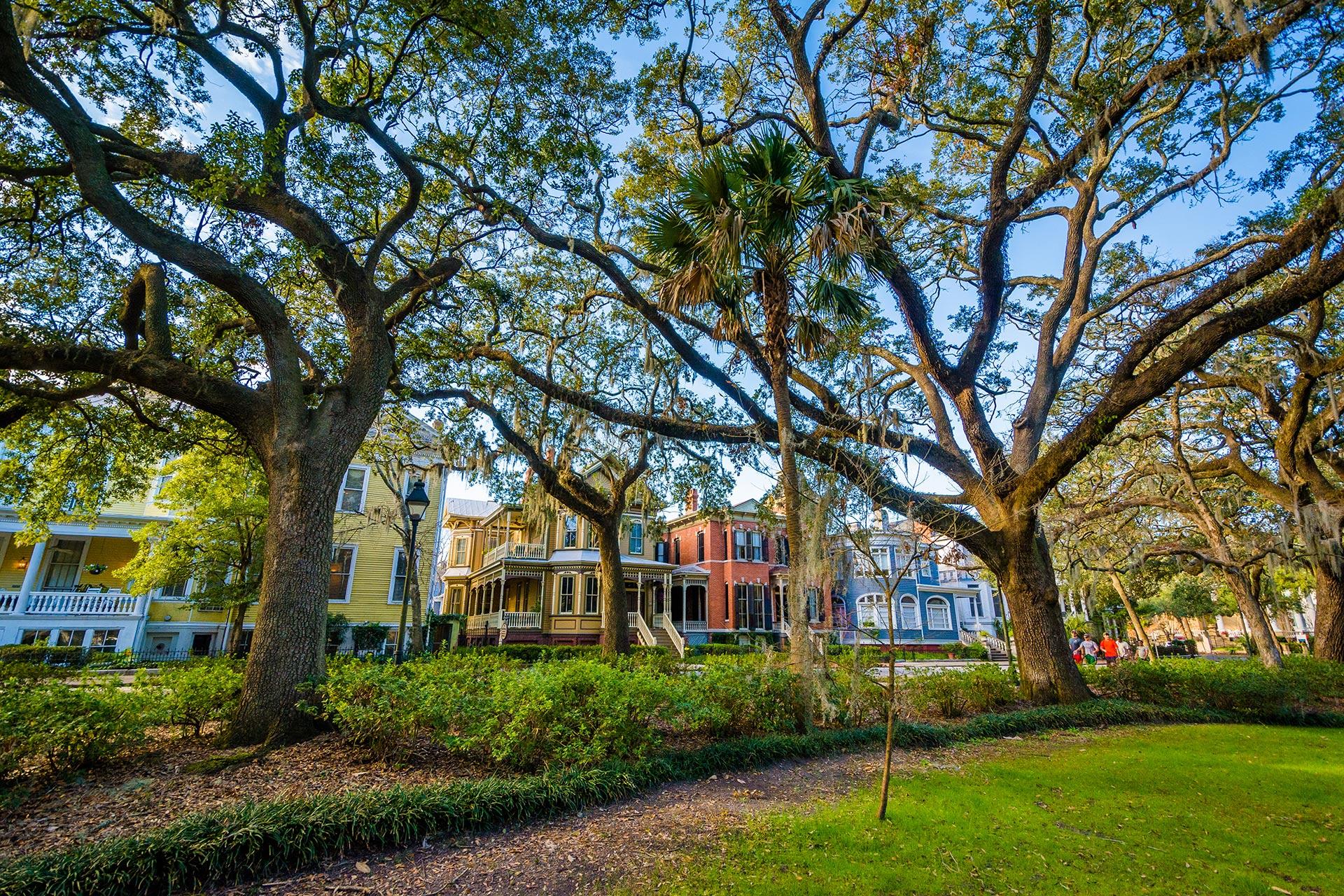 Savannah, Georgia; Photo Courtesy of Jon Bilous/Shutterstock.com