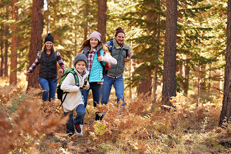 family hiking in woods; Courtesy of Monkey Business Images/Shutterstock