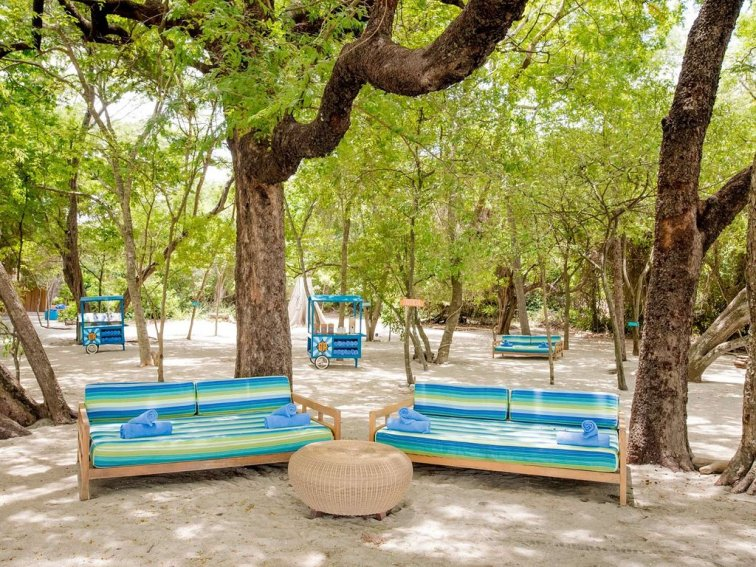 Outdoor seating among trees in Costa Rica