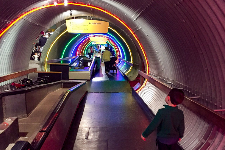 Brooklyn Children's Museum ;Courtesy of TripAdvisor Traveler/Michael K