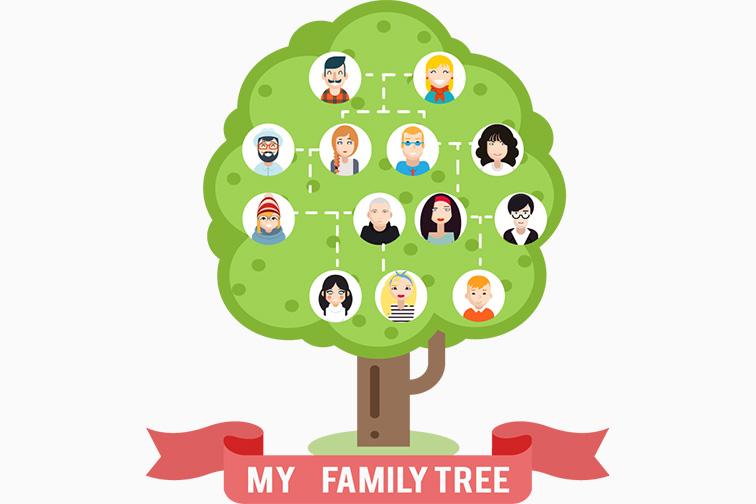 family tree illustration; Courtesy Shutterstock