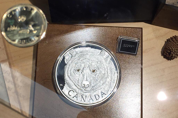 A coin with a bear on it is displayed at the Winnipeg Royal Canadian Mint.