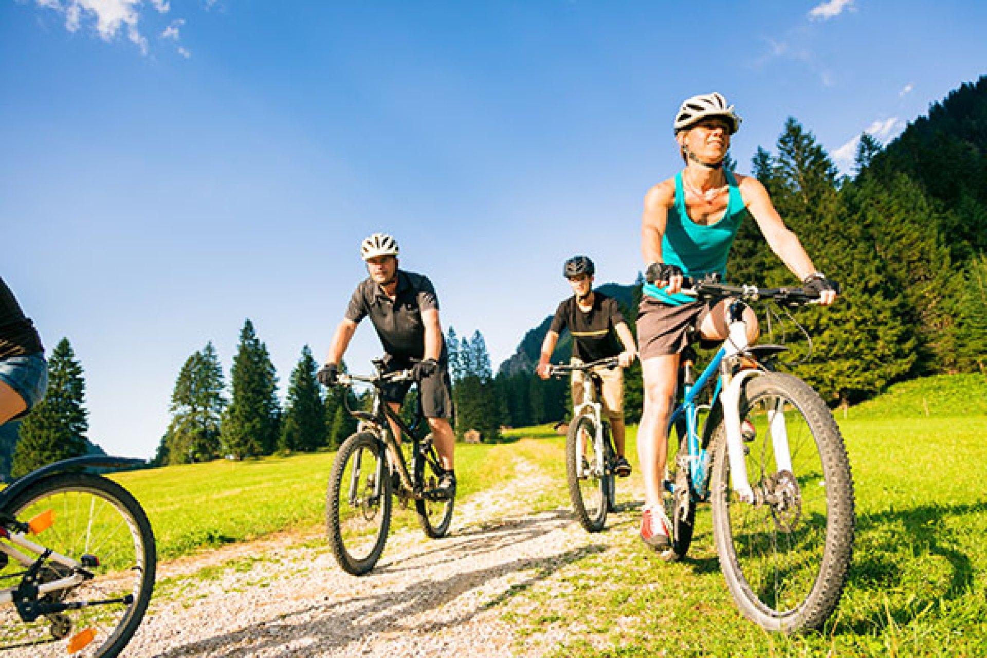 A family of four biking through the wilderness.