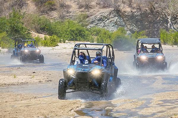 Desert tour in Cabo, Mexico.