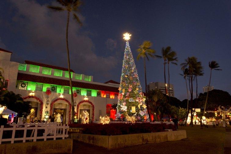Oahu Hawaii Christmas; Courtesy of cleanfotos/Shutterstock.com