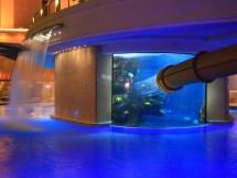 Golden Nugget Pool Las Vegas Water Slide