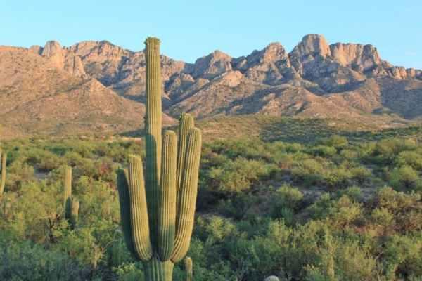 attractions in arizona