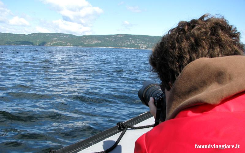 Fotografare le balene a Tadoussac