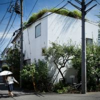 House in a Plum Grove, Tokyo, Japan