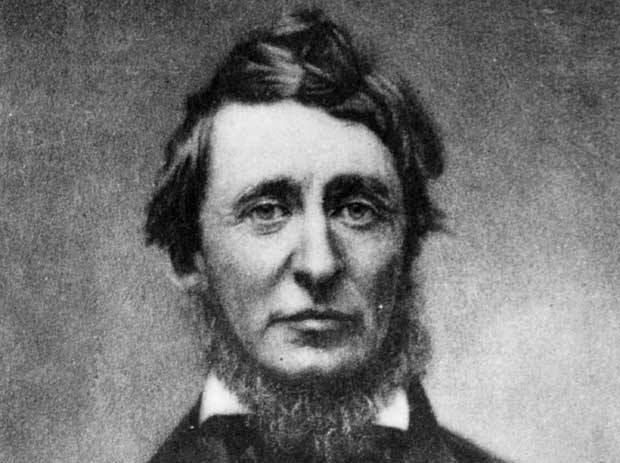 Image result for henry david thoreau