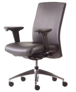 neutral posture chair review grey striped covers office produced ergonomic chairs a company that was leading the sitting way in 1989 which began its operations then fact two decades from now