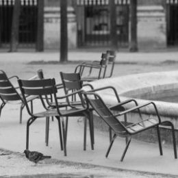 2014 - Paris - jardin - palais royal - noir et blanc