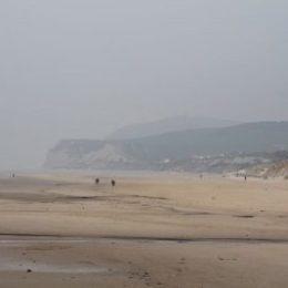 2014 - Wissant - plage - vue cap blanc nez