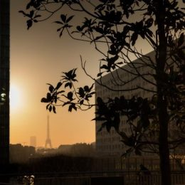 Paris-Défense - Bassin Takis - Soleil hiver matin - Tour Eiffel